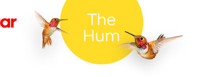 Nectar Mortgages – The Hum – What does $700k buy you?